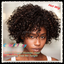 Short African Braided Wig Afro Curl Brazilian Hair Full Lace Wig With Baby Hair For Black Women