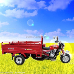 Adult Cargo Motor Tricycle For Sale In Philippines