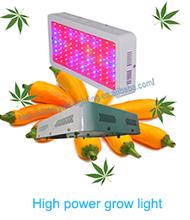 Vegetative 300w Led Grow Lights Grow Panel Lamps