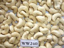 Vietnam cashew nut kernel grade WW240- HAPRO VIETNAM