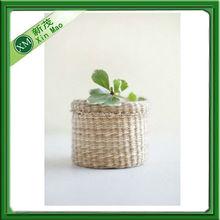 decorative mini plant&flower pots indoor wholesale