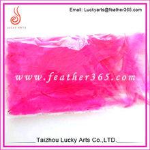 Venta al por mayor pink materia prima de plumas de pollo