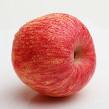 gmo fuji apples fresh fruit