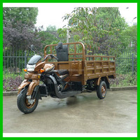 Adult Tricycle With Power Motor Use for Cargo