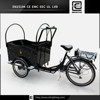 Brand new family BRI-C01 tricycle with wooden cargo box price
