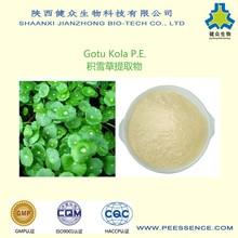 GMP Factory High Quality Gotu Kola E.P/Centella Asiatica Herb/Gotu Kola Powder
