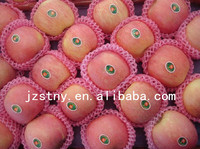 fresh perfumed fuji apple in China with whosale price
