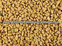 Fenugreek Seed Extract Oil