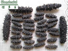Nutritious dried sea cucumber for sale,