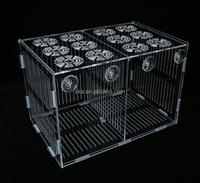 Chinese manufacturer wholesale clear acryl aquarium isol box