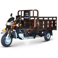 China BeiYi DaYang Brand 150cc/175cc/200cc/250cc/300cc 2013 new cargo three wheel tricycle