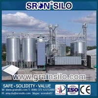 SRON 2000 Tons Silo for Corn Wheat Paddy Rice Soybean Storage