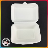 Disposable biodegradable Sugarcane Food Packing Bag Container