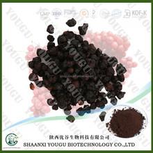 schisandra chinensis extract powder / fructus schisandrae p.e./ schisandrin 1%hplc