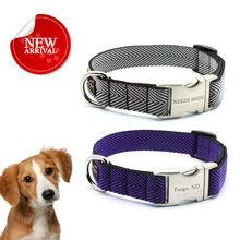 dog accessories / pet accessories