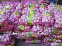 jinxiang fresh wholesale garlic