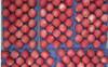 2014 New Crop fresh Fuji Apple, sweet red Fuji Apple Fruit From yantai,gansu /shanxi China