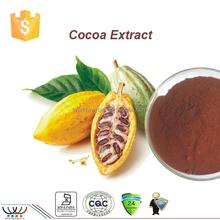 free sample cocoa extract,HACCP KOSHER FDAcosmetics raw material cocoa bean extract