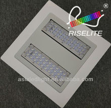 60~120W UL&cUL Gas Station LED Canopy Lights,CREE/EPISTAR LED,Warm White 2700K,120 degrees,Recessed or Suspending