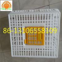 plastic chicken transport cage for sale skype :yolandaking666