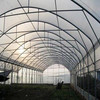 High Quality 10 Year Warranty Bayer Makrolon UV Polycarbonate Sheet greenhouse winter tunnel greenhouse with hydroponic farming