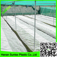white 8*50m bug window screen netting greenhouse insect proof net for sale