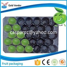 California USA Popular Wholesale Fresh Produce Packaging Customized Disposable Plastic Fruit Tray
