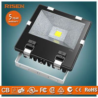 Factory Pirce 80W LED Floodlight Outdoor IP65 Projector Light