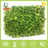 100% base plant new crop dried spinach leaf