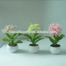2014 caliente mini venta en maceta de flores artificiales/flor de primavera series
