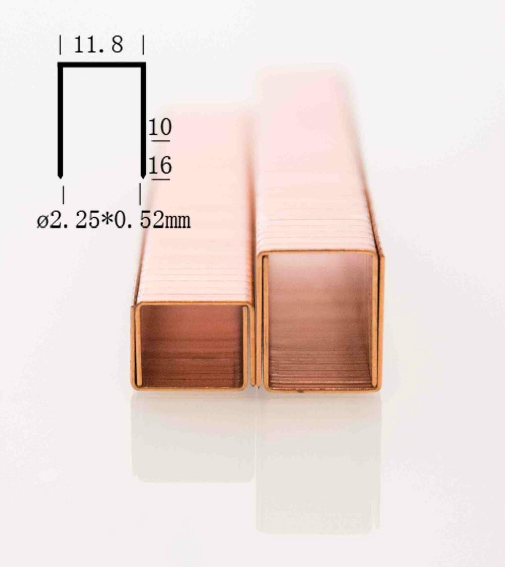 SB (2).jpg