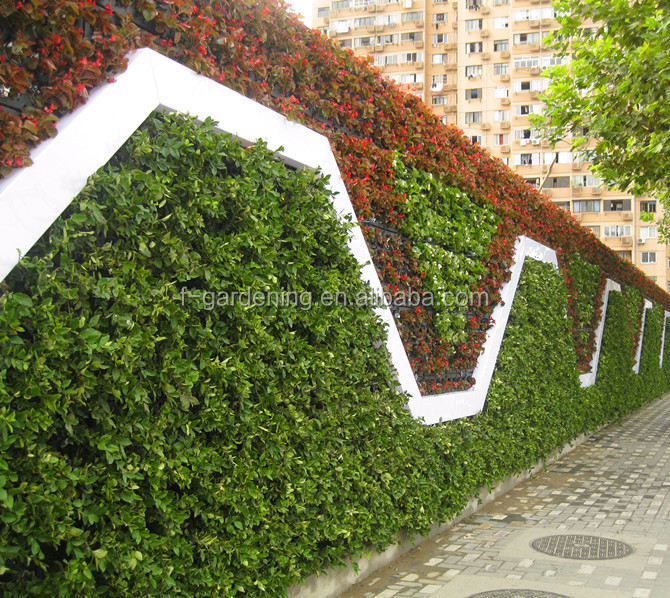 Vertical garden system decorative green wall panels flower for Vertical garden wall systems