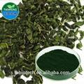 Fabricante de puro natural de alta calidad en polvo de la clorofila, de sodio clorofilina de cobre, super clorofila en polvo