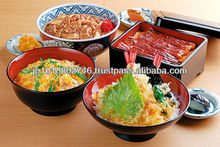 Artificial Foods for restaurant sales promotion made from PVC