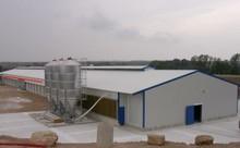 Durable rapide coût de la haute qualité acier structure poulailler