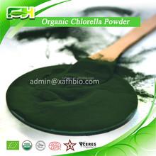 2015 nuevo certificado orgánico Chlorella en polvo ( 100 gramps de muestras de libre de carga )