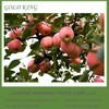 Export Red Chief Fuji Apple from Yantai