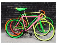 Colorful customized logo fixed gear,fixed gear bike,bike factory direct