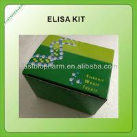Porcine brain natriuretic peptide,BNP elisa kit