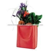 Nonwoven Fruits carry Bag