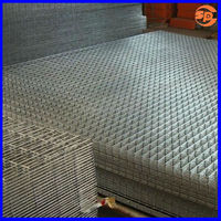 """welded wire mesh SS316 1/4"""" mesh for channel fence"""