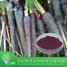 High quality black carrot juice concentrate extract manufactures