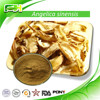 Wholesale 100% Natural High Quality Dong Quai Root Extract