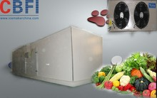 Prefabricated Refrigerator Chiller Walk In Cold Room with chicken