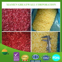 Professional food supplier for frozen fruits