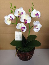 artificial foam flowers white butterfly orchid with black ceramic pot