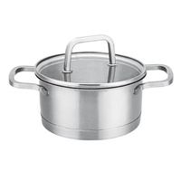 Household items as seen on TV stainless steel sauce pot
