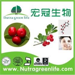 Alpha Arbutin/uva ursi extract a arbutin,,bearberry extract Alpha Arbutin powdern,good helpful whitening cream alpha arbutin