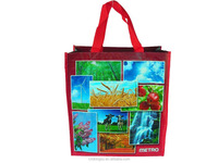 Factory Supply Good Quality pp woven gift bag ,children's cute bag
