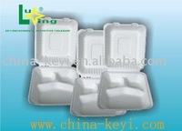 pulp mold food container